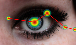 eye Tracking und usability zeigen Über 80% der Reize welche zum Hirn gelangen sind visuell